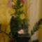 Anyukámnak virágot!