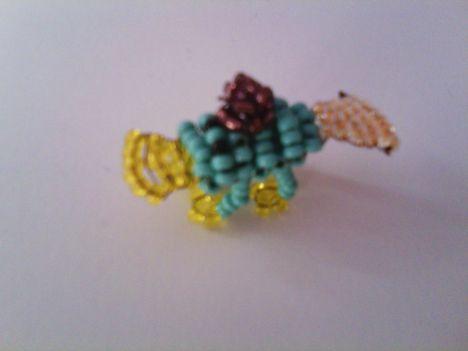 Kacsacsőrű kerry