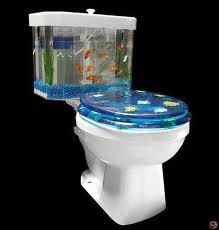 akvárium wc