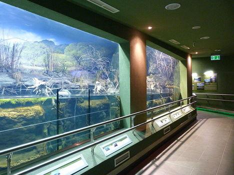 Akvárium2