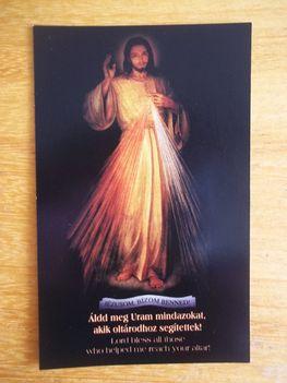 Tengan Sebastian SVD újmisés szentképe