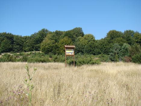 Hargita megye természetvédelmi területei - FIRTOS