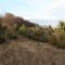 Hargita megye trmészetvédelmi területei - FIRTOS 2