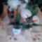 harisnyaviragok,nylon flower,meia de seda 3
