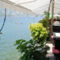Étterem és strand Dobrotán