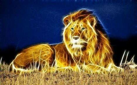 fractal-lion-255078