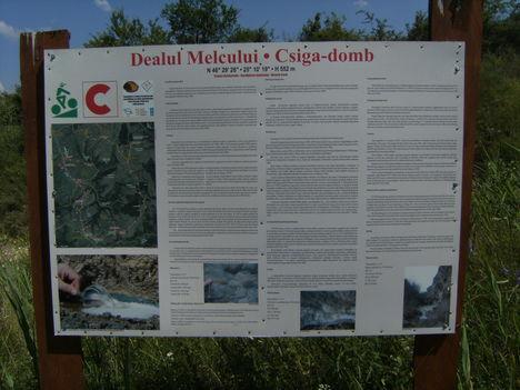Hargita megye természetvédelmi területei-Korondi Csigadomb 6