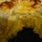 juhturos karfiol krumpliágyon