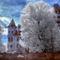Bran-castle-Romania-transylvania-dracula-castle-tree-nature