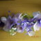 harisnyaviragok,nylon flower,meia de seda 13