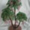 Virágos fa 2