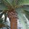 Kilátás a szobánkból, Palma hotel