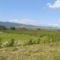 Hargita megye természetvédelmi területei - Benes rétláp 1