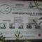 Borsáros láp -Hargita megye természetvédelmi területei 1