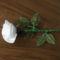 1 szál fehér rózsa