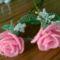 2 szál rózsa