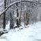 Bakonyszentlászló télen 7