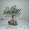 gyöngy fáim 3
