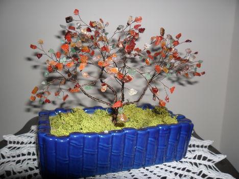 gyöngy fáim 4