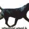 Rottweiler - Az első végtagok dinamikája