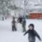 Tél, 2013. 01. 17. 12