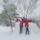 Tél, 2013. 01. 17.
