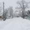 Tél, 2013. 01. 17. 1