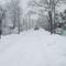 Tél, 2013. 01. 17. 20