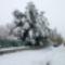 Tél, 2013. 01. 17. 4
