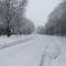 Tél, 2013. 01. 17. 6