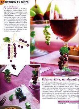 szőlő  minta a praktika ujságból 2