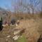 Szilárd hulladék gyűjtés 2009.03.21. 020