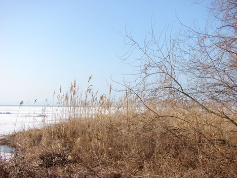 Tavasz-Balaton, március 5.-én. 10
