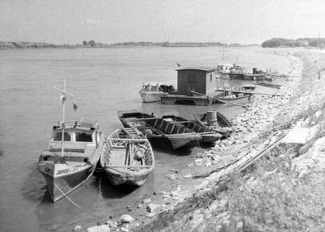 Gönyű, kikötő 1956