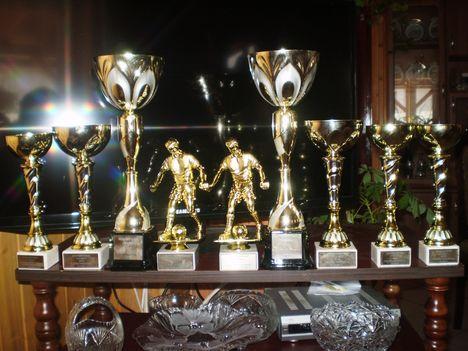 Falunapi focitorna díjak 2013