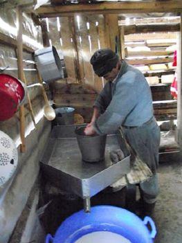 ESZTENÁK A NAGYHAGYMÁSON sajtkészítés