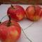 Ezek az almák a karácsonyfán lógtak...