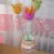 Nemezelt tulipánok