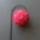 Dekoracio-001_1737533_7620_t