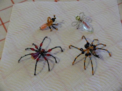 P1040346 Pókok és rovarok csapata