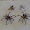P1040346 Pókokés rovarok csapata