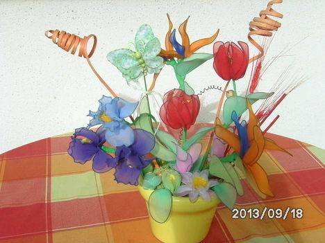 harisnyavirágok írisz, papagály, tulipán