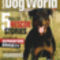 american-rottweiler-dog-world
