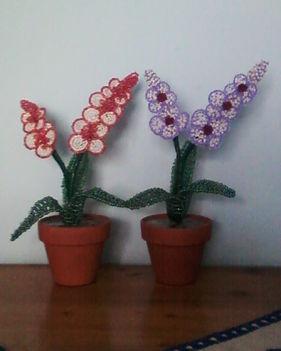 kis orhideak