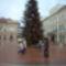 Szeged karácsonyfája