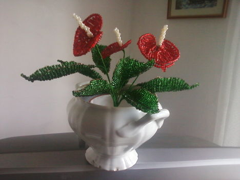 anyukám virágai 10