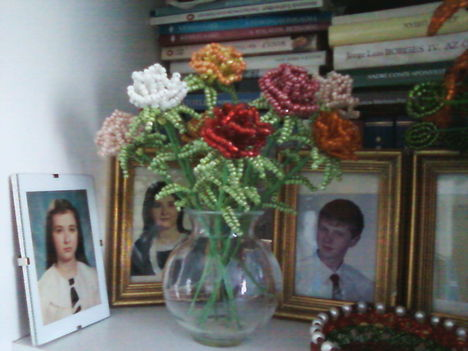 anyukám virágai 6