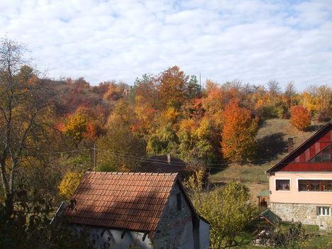 A Bükk ősziképei. 15