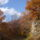 Az őszi Bükk képei.2.