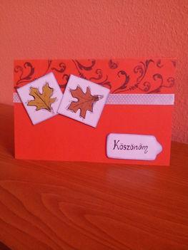 """Őszi """"köszönöm"""" képeslap"""